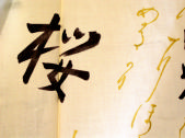 a yukata with gold and black kanji on an ivory background